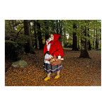 Red Ridding Hood med ed 150x150 Dina Goldstein <!  Fallen Princesses  >