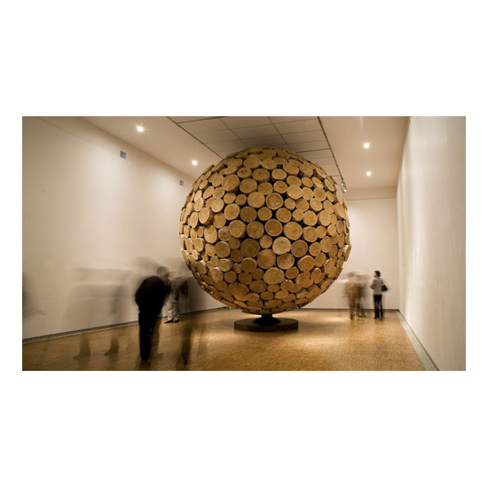 Private Collection big cone pine 2007 2 Jaehyo Lee <!  Installations  >