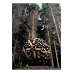 Sculpture in woodland Ireland larch tree 2002 150x150 Jaehyo Lee <!  Installations  >