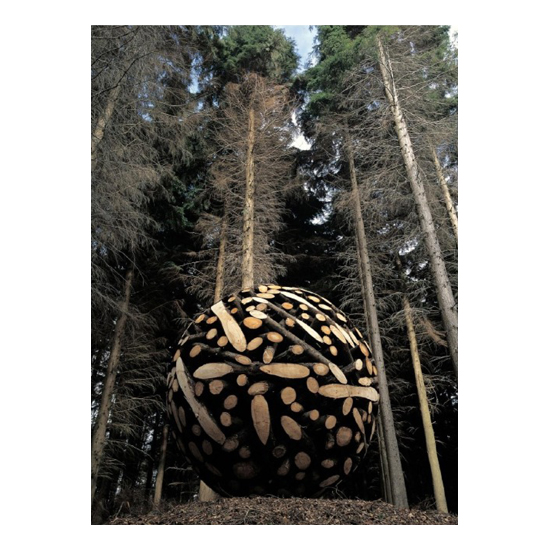 Sculpture in woodland Ireland larch tree 2002 Jaehyo Lee <!  Installations  >
