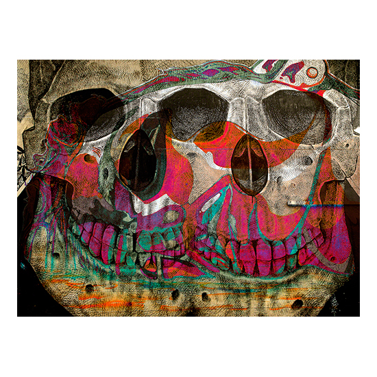 Calavera por dos Production File Resize Bill Rastetter<!  MIAMI MASH UP  >