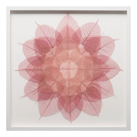 1. Rose Mini Mandala 21 x 21 Miya Ando <!  Mandala Series  >