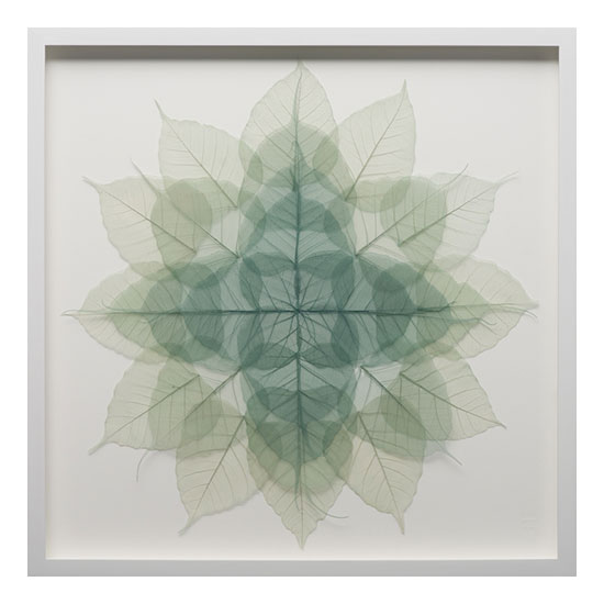 2. Green Mini Mandala 21 x 21 Miya Ando <!  Mandala Series  >