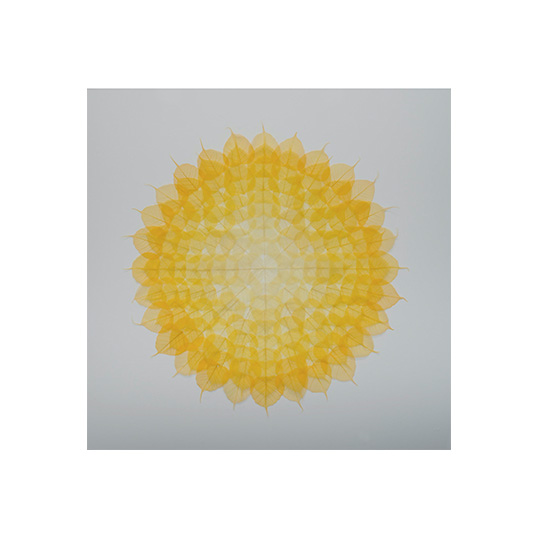 yellow dark  Miya Ando <!  Mandalas  >